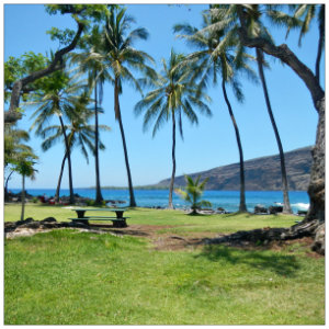 Gorgeous view of the green grass, blue waters and palm trees at Manini Beach
